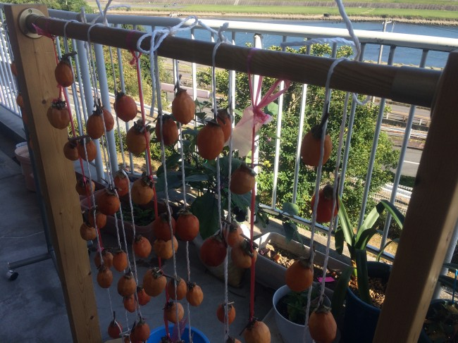 オレンジはヴィタミンカラー。干し柿を見るだけで元気になります。